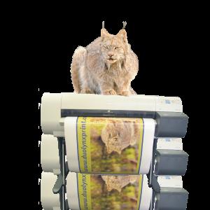 lynx_printer